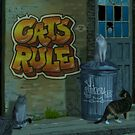 Cats Rule Graffiti by Martine Carlsen