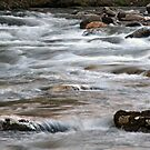 River Rapids by Gary L   Suddath