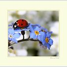 Ladybird with flowers. by Ellen van Deelen