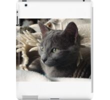 Grey Kitty iPad Case/Skin