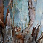 Gum Tree - Australia by Mette  Spange