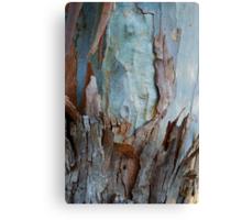 Gum Tree - Australia Canvas Print