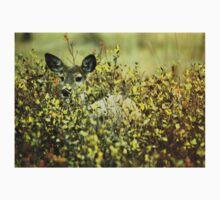 Deer in brush T-Shirt