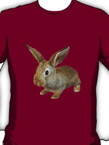 BUNNY RABBIT FARM  T-Shirt