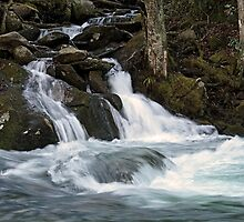 Mannis Branch Falls by Gary L   Suddath