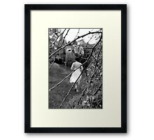 Melbourne Wedding Photography  Framed Print