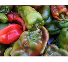CHILI PEPPER RED GREEN  Photographic Print