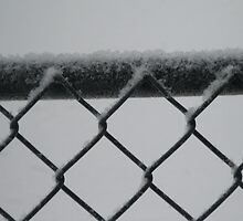 Snowy Day Fence by tvlgoddess
