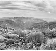 BW France Cevennes by Steven House