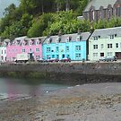 Portree Harbour View by Tom Gomez