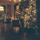 Missouri Govenor's Mansion Christmas by Allen Gaydos