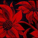 red hot flowers by picketty