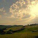 Under a Tuscan sun by Ashley Ng