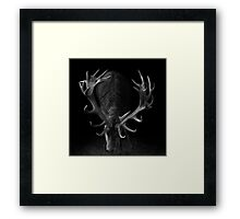 Deer on Black Framed Print
