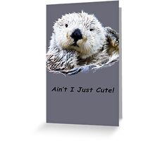 Ain't I Just Cute! Greeting Card