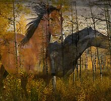 Phantom Grove by Gene Praag