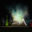 Book of Magic by Andrew Bret Wallis