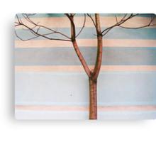 Bare Canvas Print