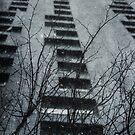 Winter Series Tower Block by Citizen