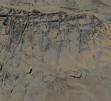 rock patterns chrome by Shany