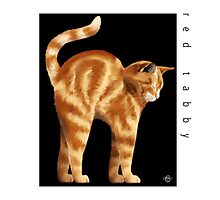 Cat Breeds: Red Tabby - Black Background by Martine Carlsen