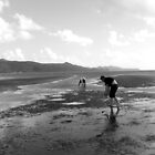 Pipi Picking, New Zealand by Emma Close