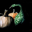Winter Squash by K. A.  Cooper