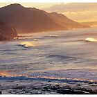 NSW South Coast by Kirk Owers