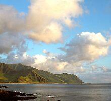 Waianae Coast Oahu Hawaii  by kevin smith  skystudiohawaii