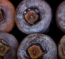 Unknown Delicacies? by John Heil