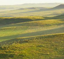 Grasslands National Park 2007 by prairielight