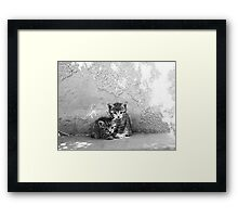 Tinky and Winky Framed Print