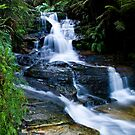 Blue Mountains Attractions - The Leura Cascades by Gayle Shaw