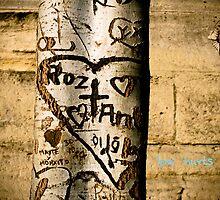 Love hurts trees by samuelcain