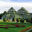 Palm House at Schönbrunn Palace / Vienna by Kurt  Tutschek