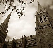St Patrick's Cathedral Melbourne by Chris Muscat