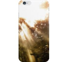 Light triumphant iPhone Case/Skin