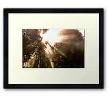 Light triumphant Framed Print