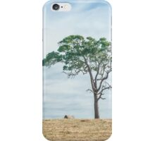In the Hayfield iPhone Case/Skin