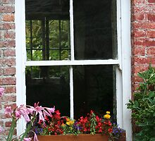 The Window And The Window Beyond by Larry149