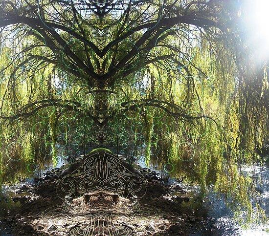 Weeping Willow Wonder by CWerk