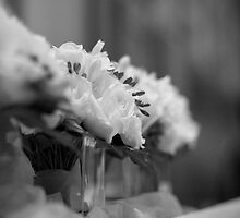 The Bride's Bouquet by Robbie McDowall