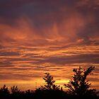 golden skies by marshaann