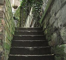 Stone Stair to Edinburgh Garden by Yonmei