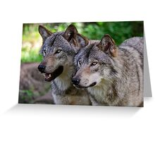 Forest Guardians  Greeting Card