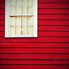 We've Got The World Looking In...Our Window by MichelleOkane