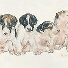 Borzoi Puppies by BarbBarcikKeith