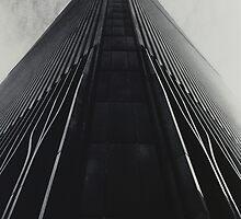 On a Knife Edge by Philip  Rogan