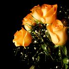 Peach Top by RockyWalley