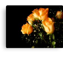 Peach Top Canvas Print